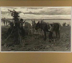 Herdersjongen met ezels