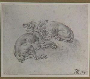Twee slapende honden