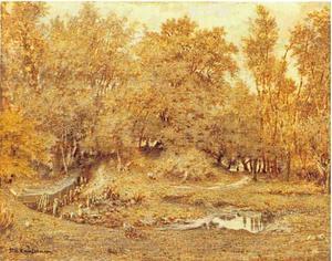 Stroom in het bos van Fontainebleau