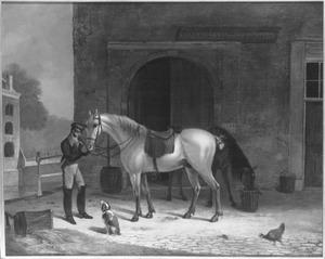 Koninklijke Paardenposterij