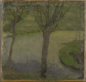 Irrigation ditch with two willows