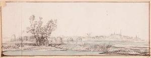 Landschap met hooimijten op het land en in de achtergrond een stad (Weesp?)