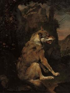 Wolf in een landschap