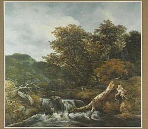 Landschap met een dode boom bij een waterval