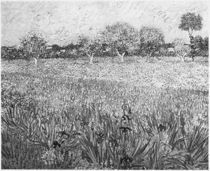 Een gezicht op Arles, irissen op de voorgrond