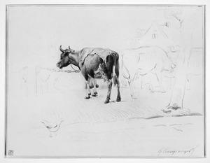 De koeienmarkt