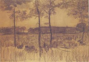 Field with young trees in the foreground