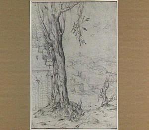 Italianiserend berglandschap met grote boom