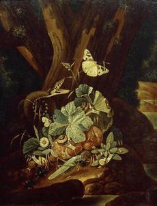 Bosstilleven met een slang, sprinkhaan en vlinders
