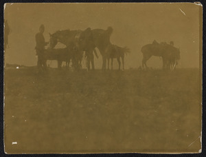 Soldaten met paarden tijdens een militaire manoeuvre