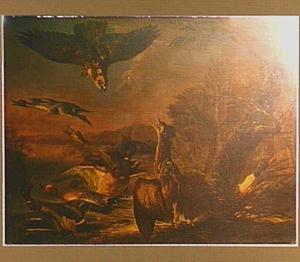 Eenden en een roerdomp, door een roofvogel uiteen gejaagd