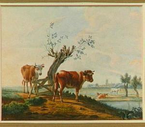 Koeien in een weiland, in de achtergrond een gezicht op Dordrecht