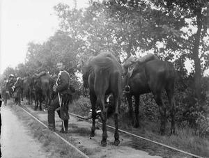 Gezicht op militairen met twee paarden tijdens een militaire manoeuvre