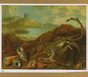 Vissen, waaronder een rog, en andere zeewezens en schelpen op de kust