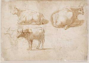 Studie van rustend vee