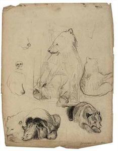 Schetsboekblad met schetsen van beren