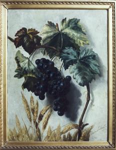 Stilleven met druiventros