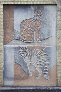 Twee katachtigen: serval en wilde kat