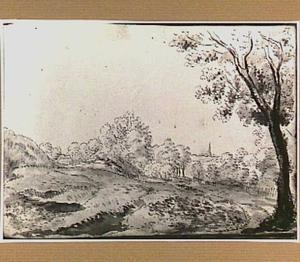 Duinlandschap met bomen in Noord-Holland