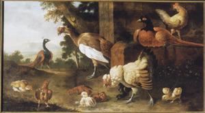 Landschap met gevogelte