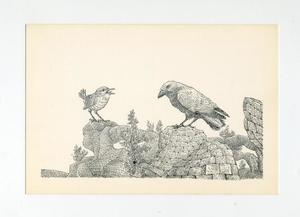 Twee vogels staan op een steenwoestijn (stad Utrecht) met planten
