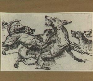 Honden die een wolf aanvallen