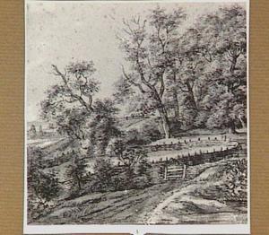 Heuvelachtig boslandschap