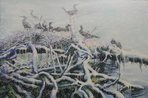 Aalscholver op het nest III