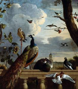 Vogels bij een balustrade met in de achtergrond het Amsterdamse stadhuis