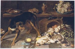 Honden en een kat dreigend tegenover elkaar in een voorraadkamer