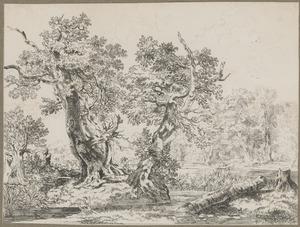Boslandschap met een jager