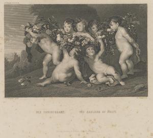 Een vruchtenguirlande gedragen door zeven putti