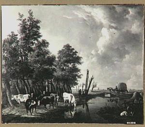 Koeien op een landweg in de buurt van Rotterdam