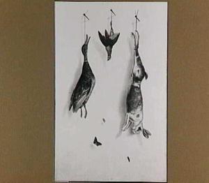 Trompe l'oeil van dood wild en vlinder voor een witte muur