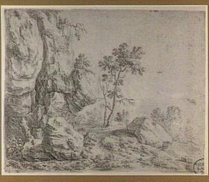 Landschap met rotswand en struikgewas