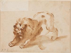 Studie van een leeuw, naar links