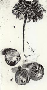 Drie pruimen en een afrikaan