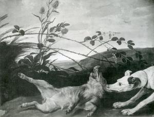 Hond valt jong wildzwijn aan