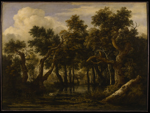 Boslandschap met vijver