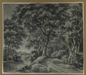 Boslandschap met rivier en een pad