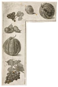 Studies van vruchten