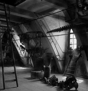 De zolder van preparateur Willem van Ee, ca. 1939