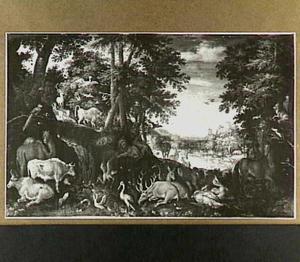 Boslandschap met dieren