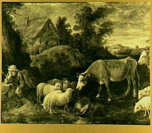 Herder met schapen en koeien