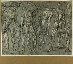 Studies van een naakte man, spiermannen en lichaamsdelen