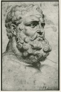 Studie van het hoofd van Hercules Farnese