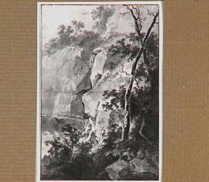 Rotswand met struiken en bomen