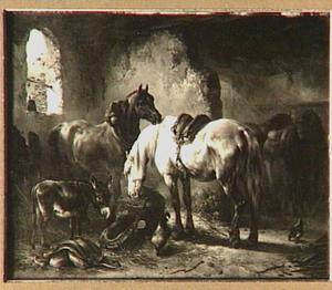 Opgetuigde paarden in een stal met een ezel