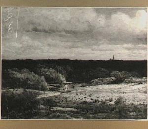 Den Haag, Panorama vanaf de duinen over Zorgvliet naar de stad