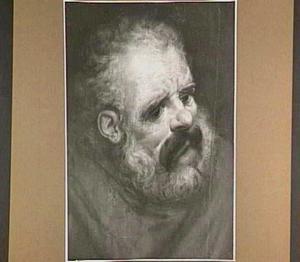 Hoofd van een oude man met baard